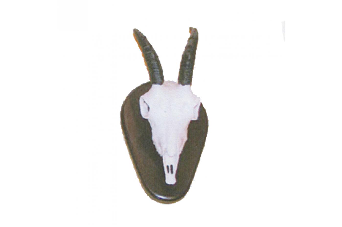 941900  Cabra Hispanica Hembra 40x15 Cm